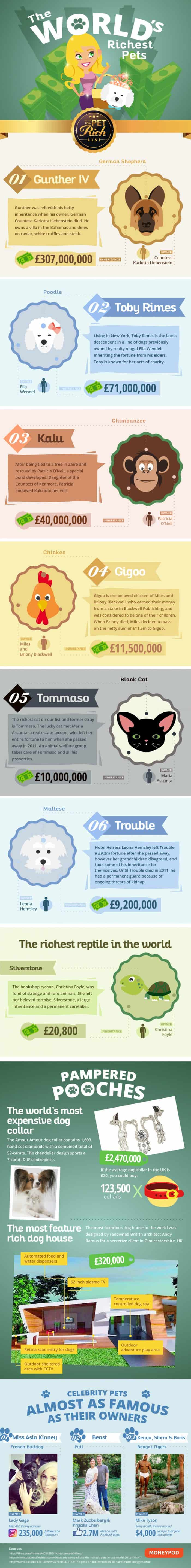 infographic describes some of the world's richest pets, many of whom have hefty inheritances