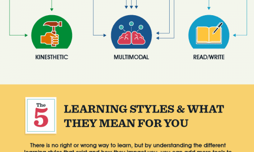 Infographic on Learn Styles