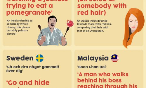 These insults from around the world need some explaining