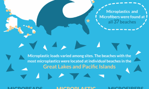 Plastics are affecting life in the National Parks and Aquatic life
