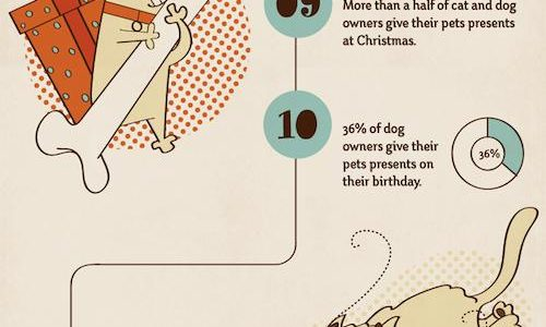 20 Facts About Pet Owners