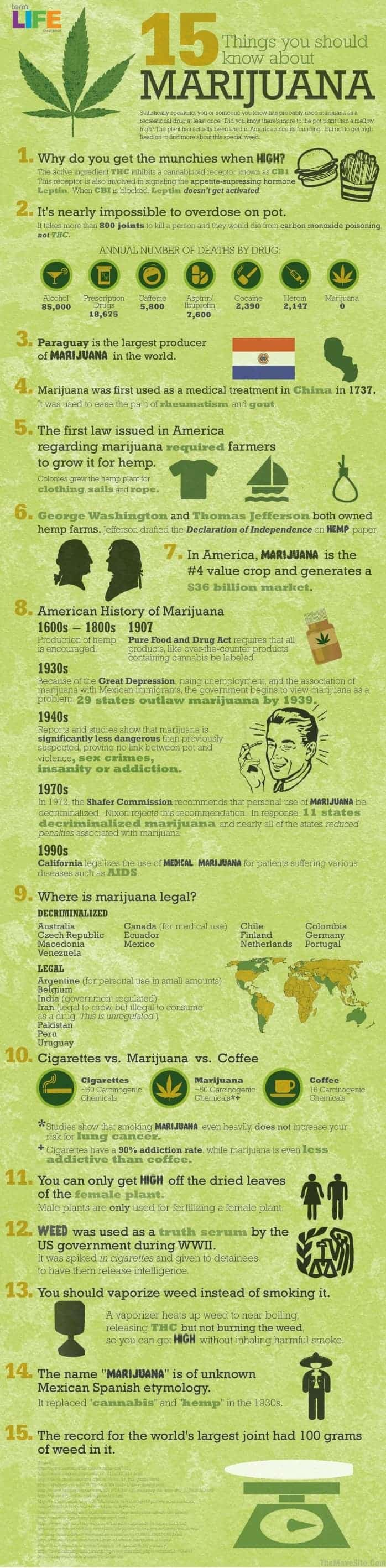 15 Things to Know About Marijuana