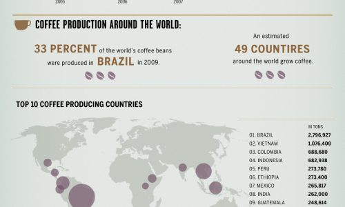 Coffee and the Global Economy