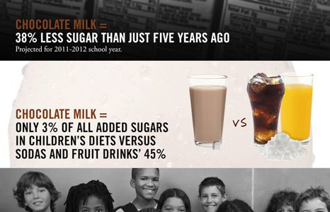 Chocolate milk facts infographic
