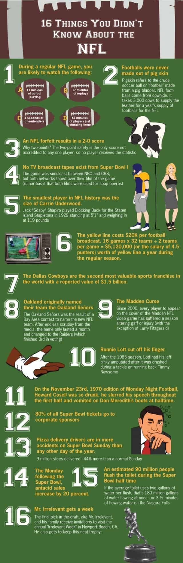 NFL Fun Facts Infographic