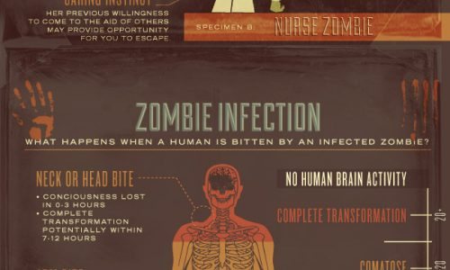 A Guide to Zombie Survival