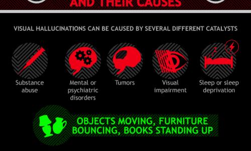 Crazy World of Visual Hallucinations