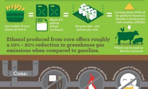 Ethanol vs. Oil
