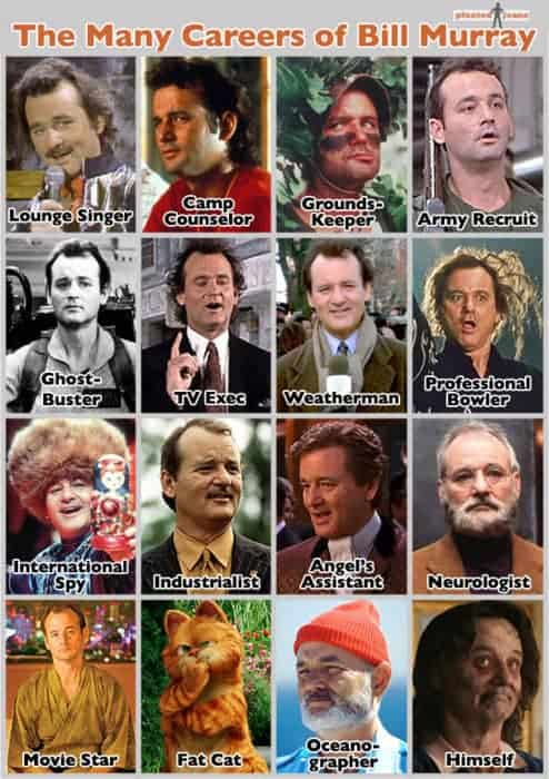 Many Careers of Bill Murray Infographic