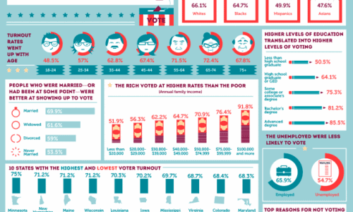 Votes In America Infographic