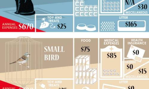 Annual Cost of Pets
