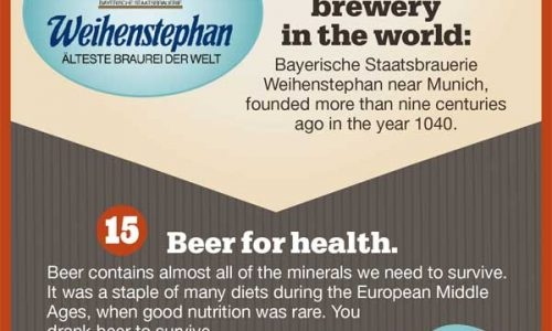 24 Fun Facts About Beer