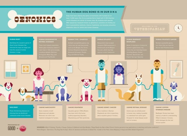 Genomics of Humans and Dogs