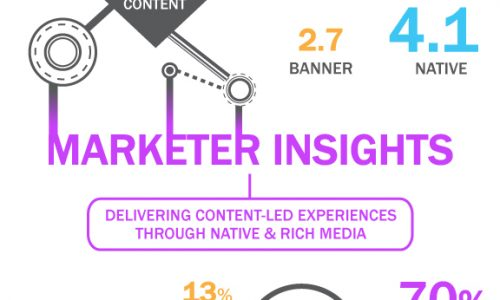 Audience and Marketer Insights on Digital Advertising Infographic