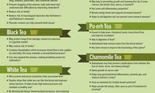 Medicinal Teas Infographic