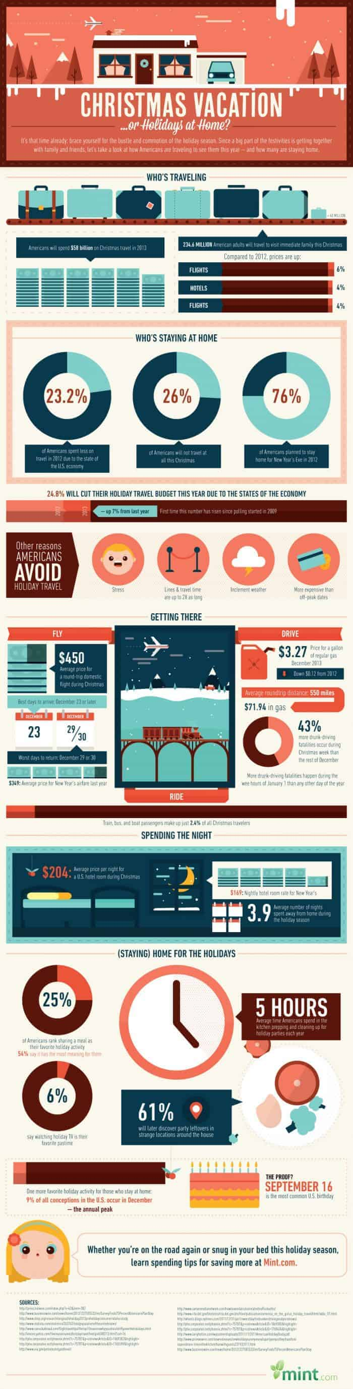 Christmas Vacation or Holidays At Home Infographic
