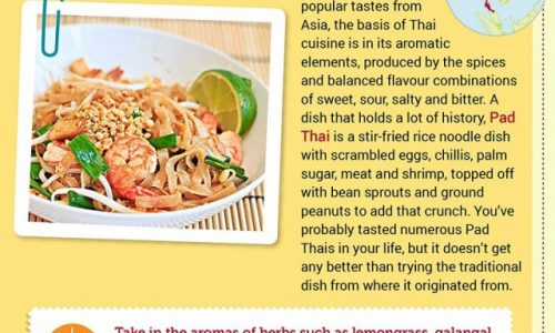 Tastes of Mainland South-East Asia Infographic