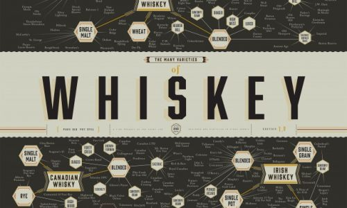 Many Varieties Of Whiskey Infographic