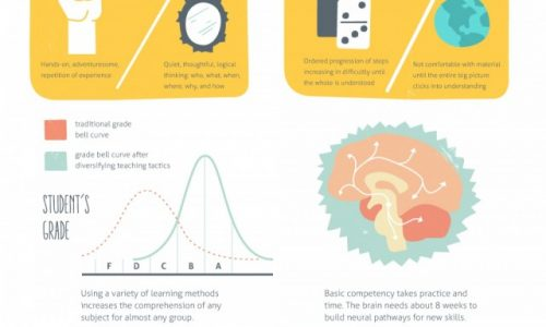 What it Means to be an Expert Infographic