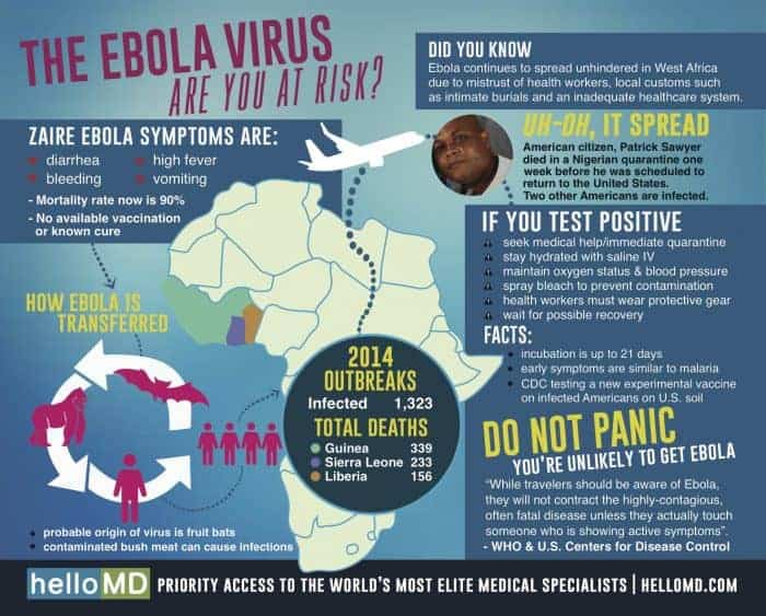 The Ebola Virus – Are You at Risk? | Daily Infographic