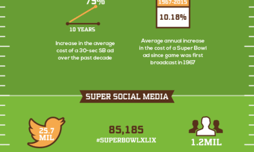 Super Bowl XLIX By The Numbers Infographic