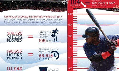 Boston Snow Stats Infographic