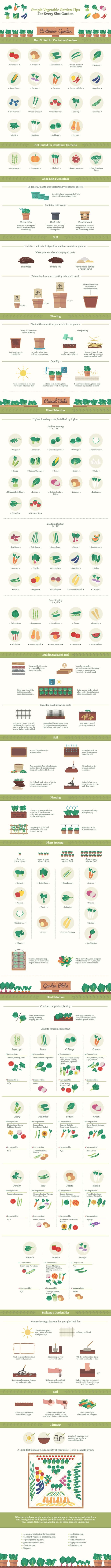 Simple Vegetable Garden Tips Infographic