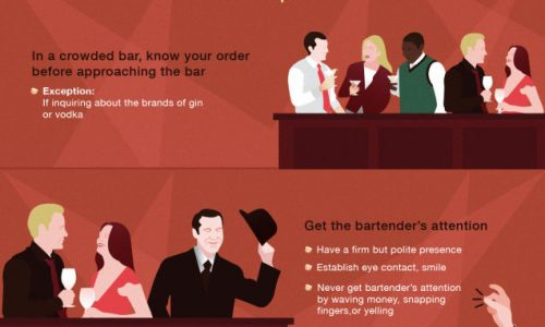 Martinis Guide Infographic