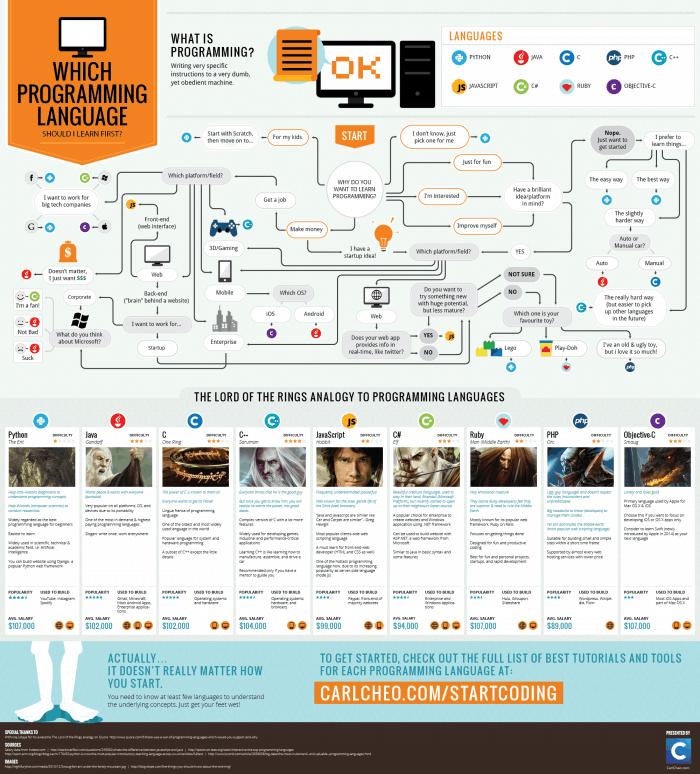 Programming Language Infographic