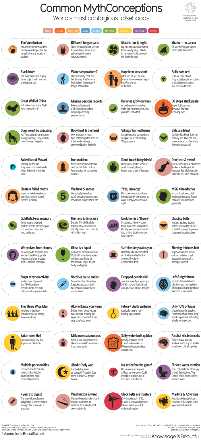 50 Common Myths Conceptions Infographic