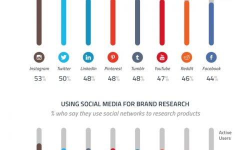 Instagrammers Follow Brands Chart Infographic