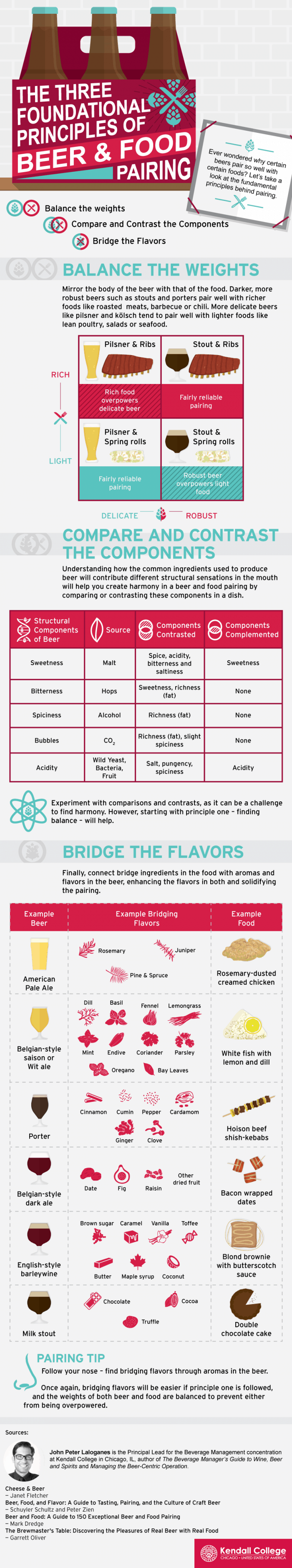 Principles of Beer and Food Pairing Infographic