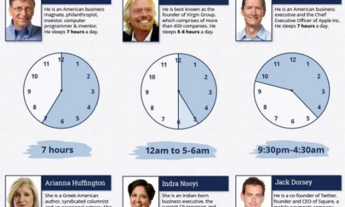 Sleep Patterns of Highly Successful People Infographic