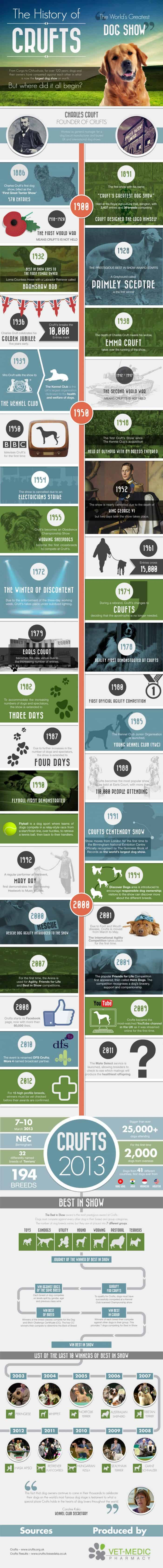 History of crufts infographic