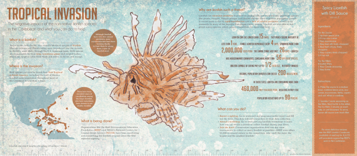 Lion fish infographic
