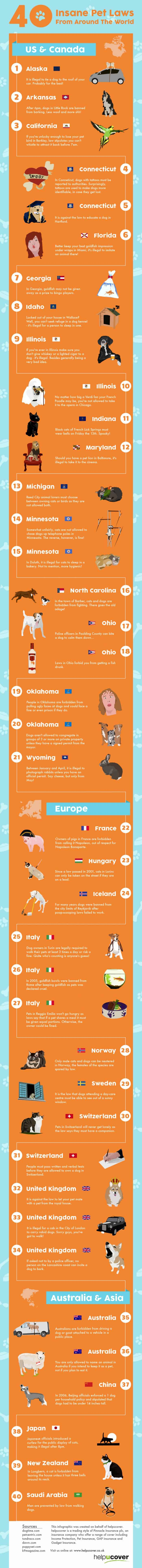 Weird pet laws around the world infographic