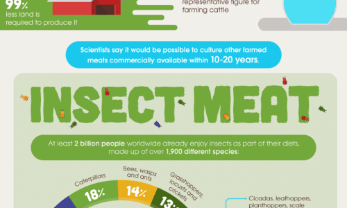 The Future of Meat Infographic