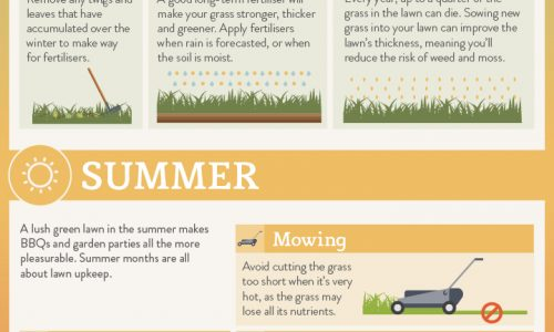 Cheat Sheet to a Fabulous Lawn