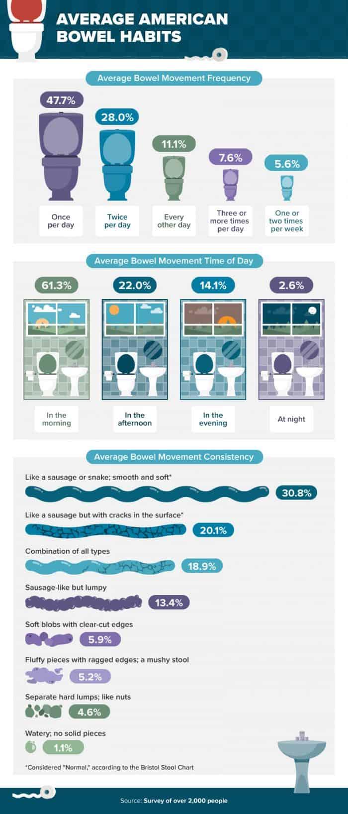 Average American Bowel Habits Infographic