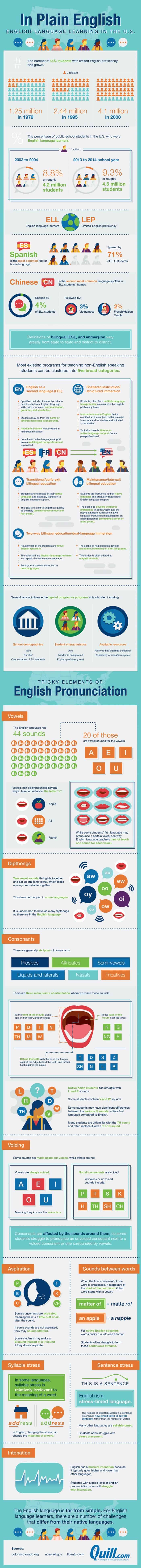 English Language Learning In The US Infographic