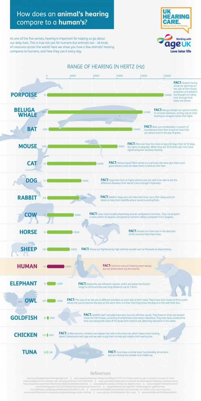 Range of hearing for various animals