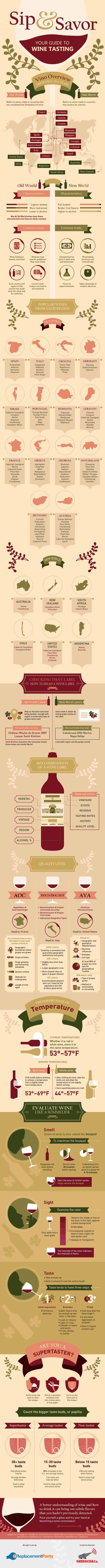 Complete guide to wine tasting infographic