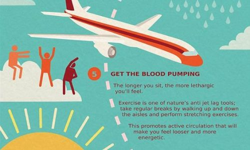 Tips to avoid jet lag infographic