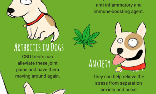 benefits of cannabinoids dog treats that comes from cannabis