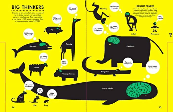 Big Thinkers