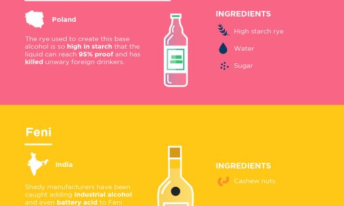 The Most Unusual Drinks Around The World