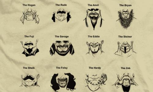 beard guide to wrestling