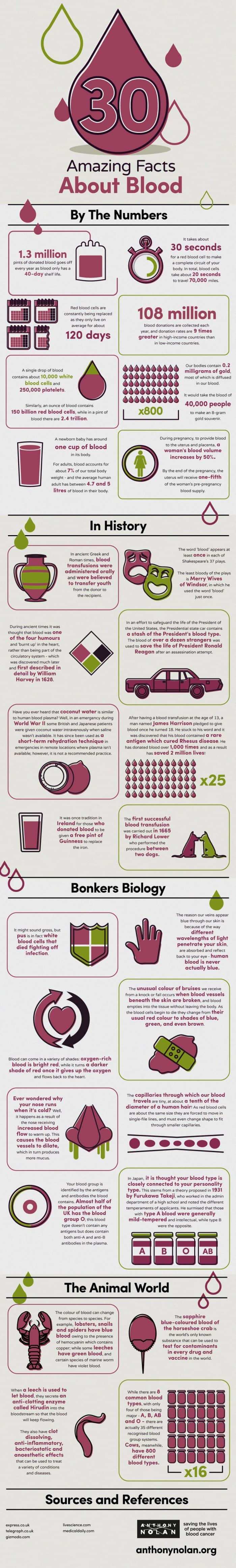 Infographic with 30 interesting facts about blood.