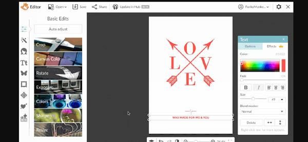 Picmonkey DIY graphic design platform
