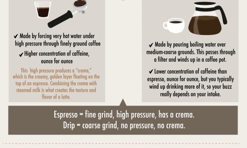 infographic with answers to basic coffee questions